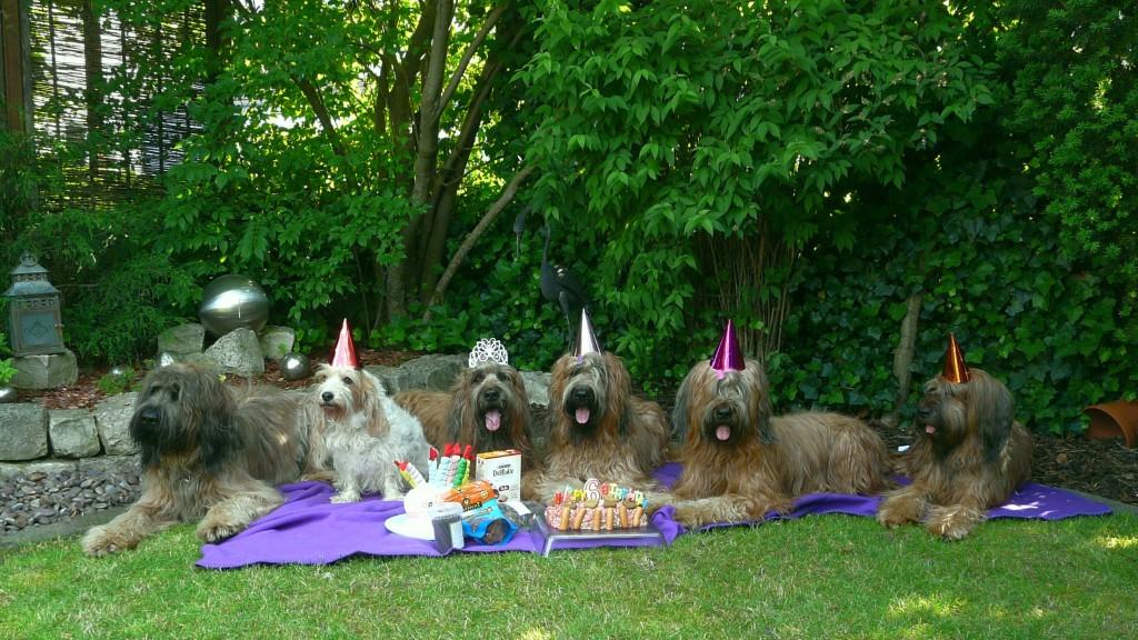 6ter Geburtstag A-Wurf