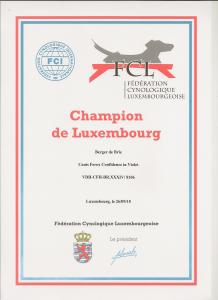 Championtitel Luxemburg