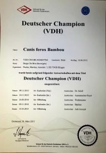DeutscherChampionVDH_CanisFeroxBambou-208x300