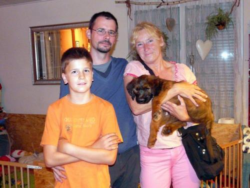 Bibi-Lotta wohnt jetzt bei Fam. Gerwe/Porzucek, die schon die Bergamaskerhündin Jule haben. Die Zwei sind ein echtes Dreamteam.